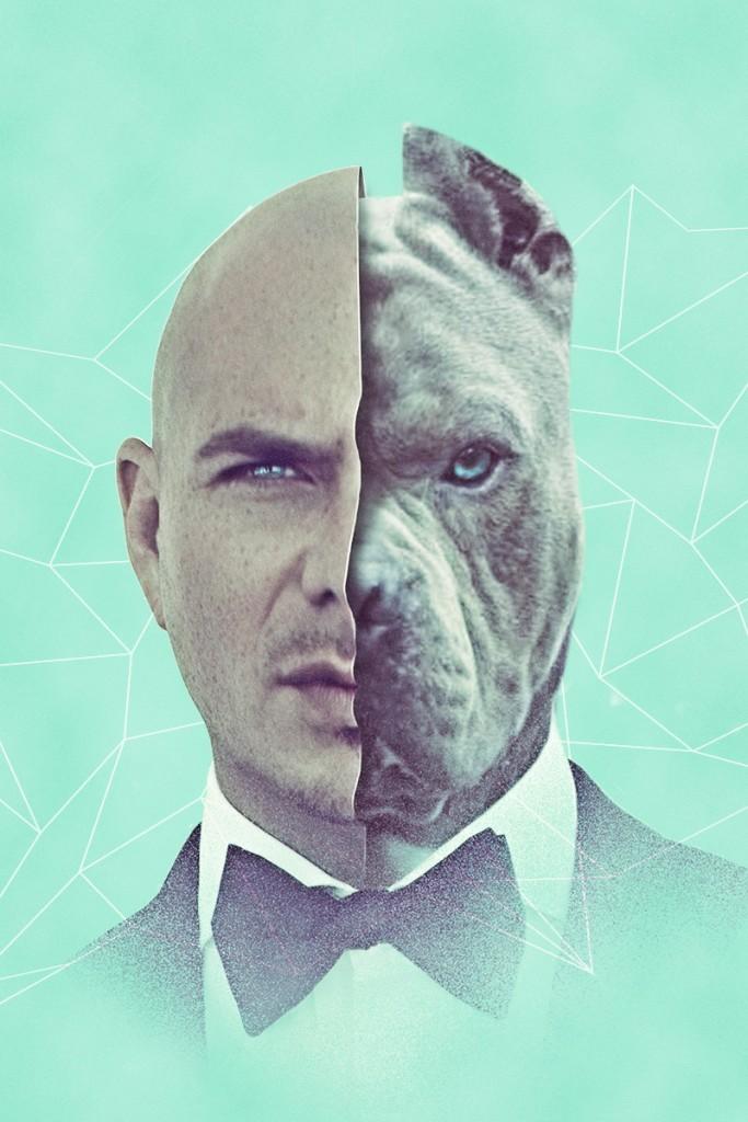Pitbull_2Face_poster_SM